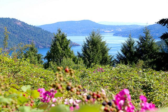 Photo courtesy of British Columbia/Flickr
