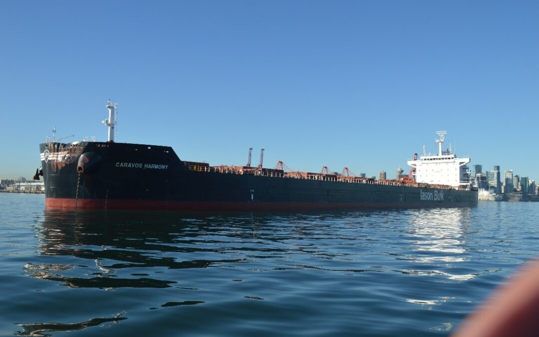 Breakdowns in situational awareness and communications were key factors leading to a striking in Vancouver Harbour